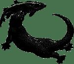 Lontra - simbolo Tarka Libri