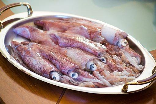 calamaretti-tuscia