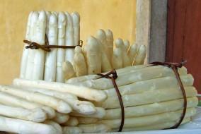 asparago bianco bassono del grappa