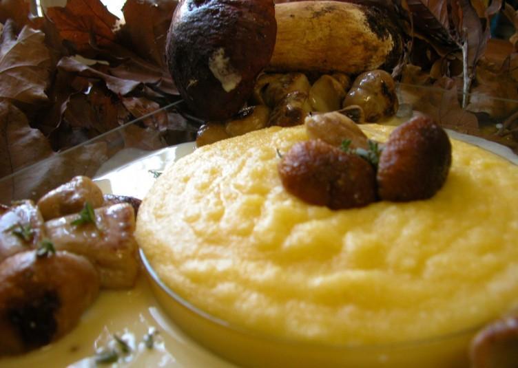 polenta-con-intingolo-di-funghi